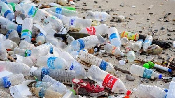 plastic bottle pollution on a beach