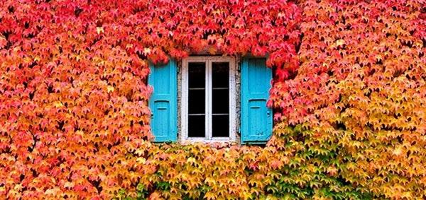Plan your autumn and winter getaways